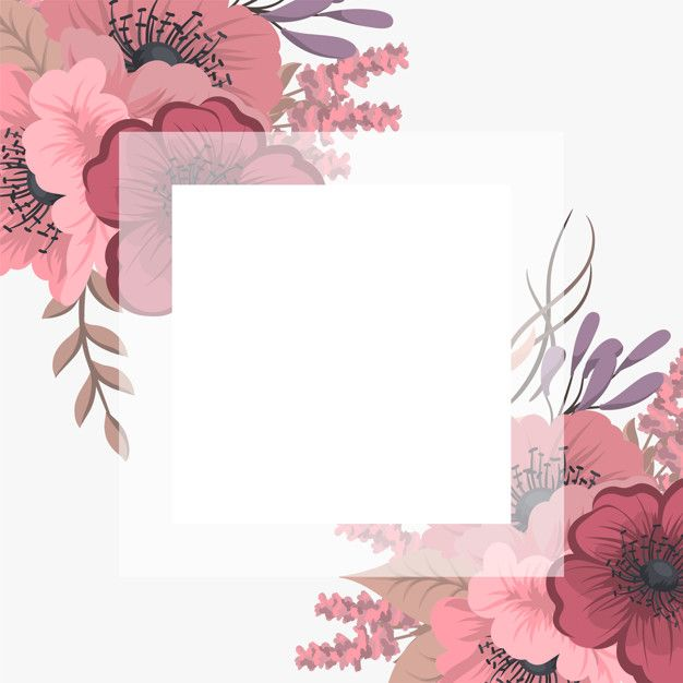 Download Floral Frame With Colorful Flower. for free