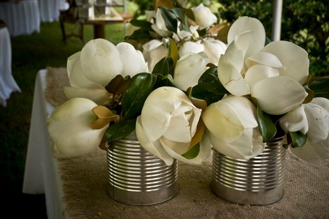 Magnolias So Southern Reminds Me Of My Mother And Grandmother All Time Favorite Flower Tree