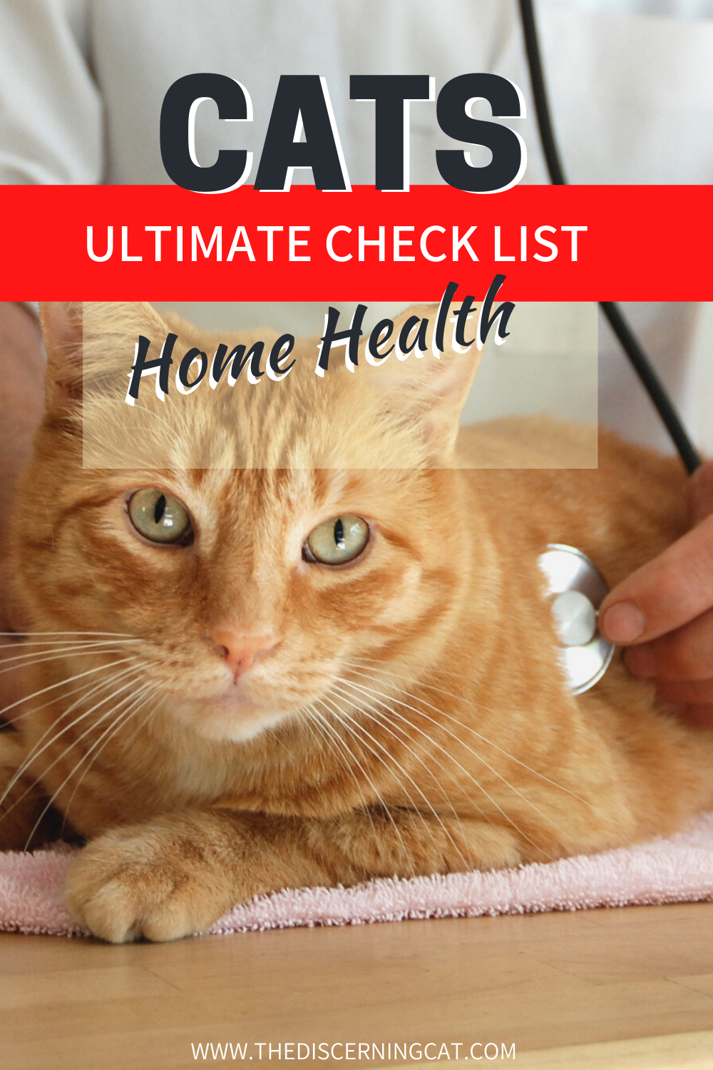 Cat Check List For Home Health In 2020 Cat Health Problems Cats Sick Kitten
