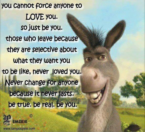 Awesome Shrek Quote Lessons Learned In Life Wonder Quotes Just Be You