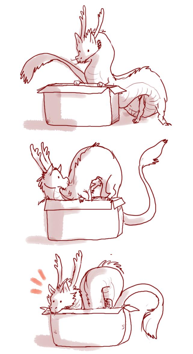 if I fits, I sits #dinosaurpics