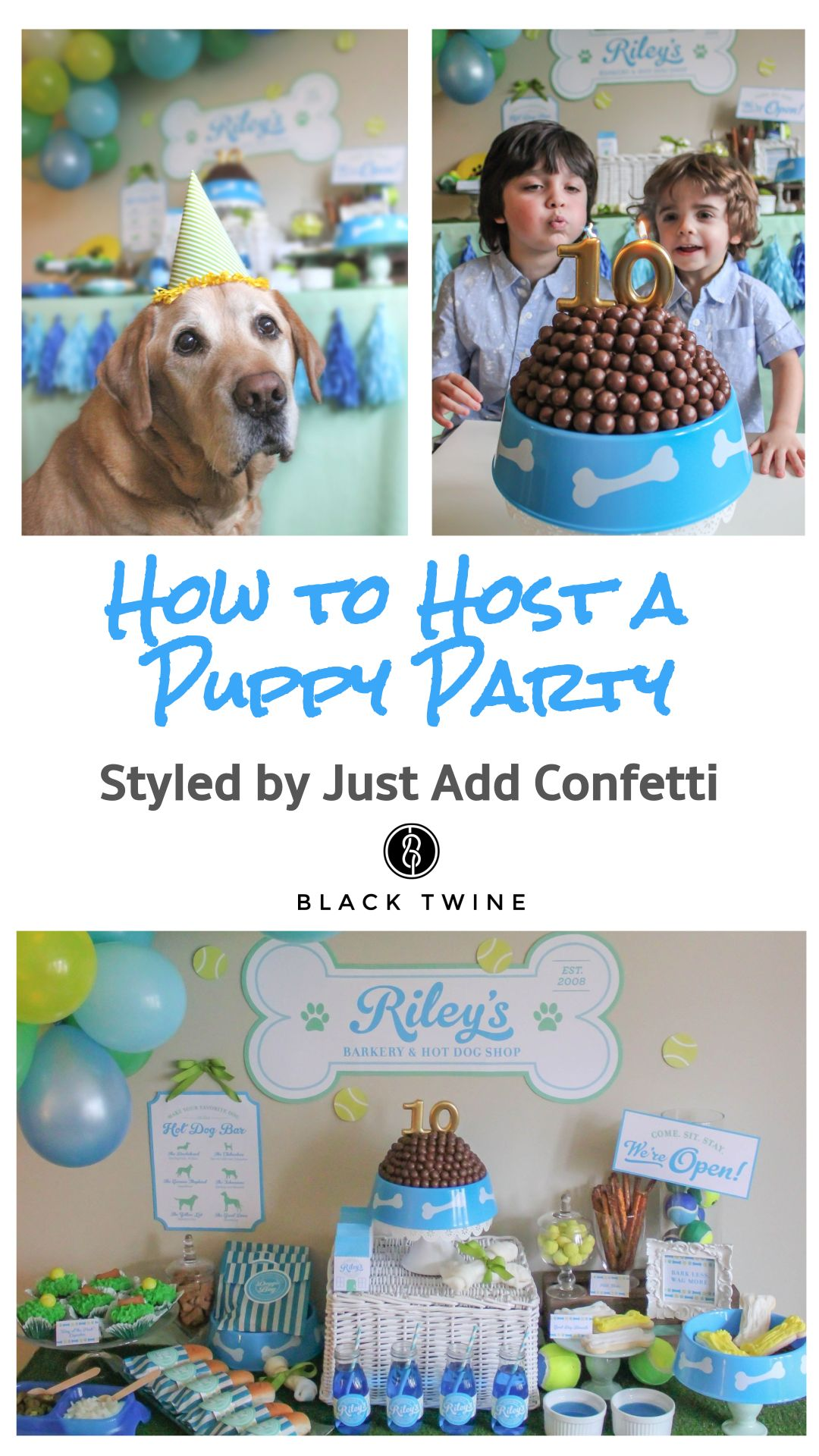 How To Host A Puppy Birthday Party Styled By Just Add Confetti Black Twine Birthdayparty Part Dog Birthday Party Puppy Themed Birthday Party Puppy Birthday