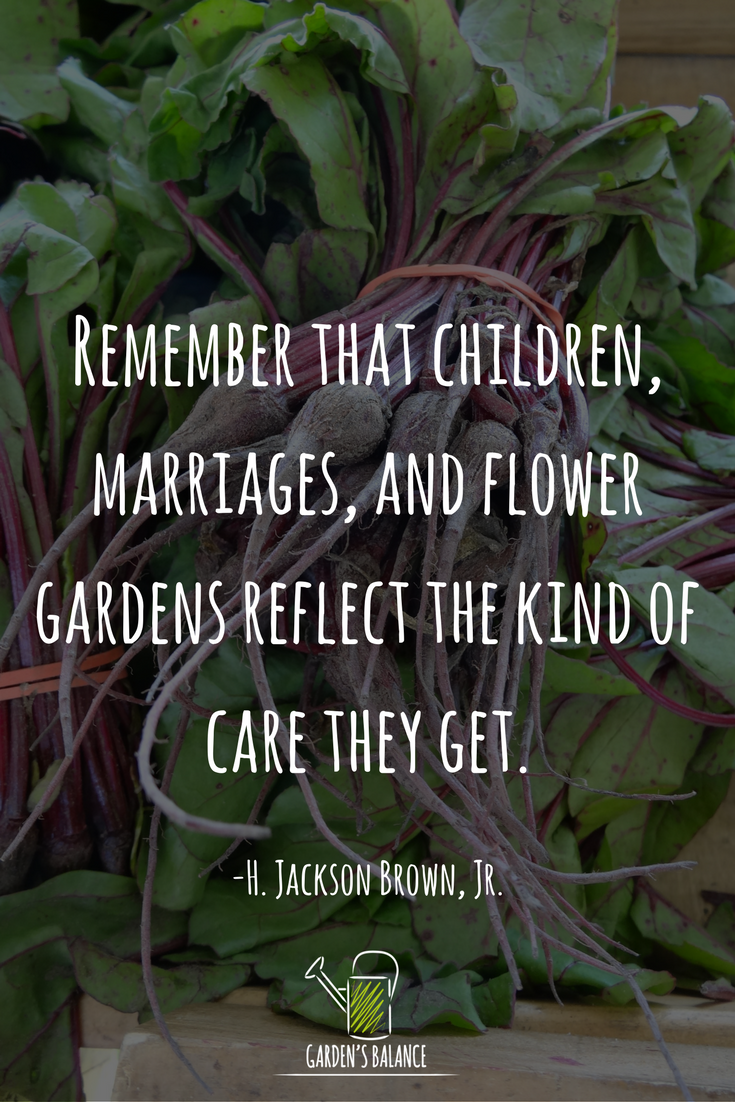Gardening Quotes For Kids : gardening, quotes, Characters, Coming, Every, Month, Garden, Quotes,, Inspirational, Words,, Words