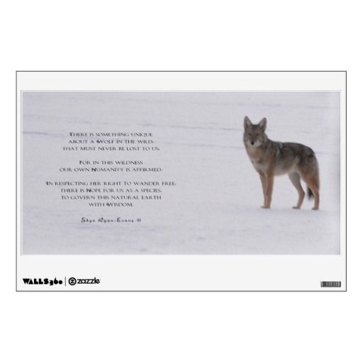 Walls of the Wild Wolf