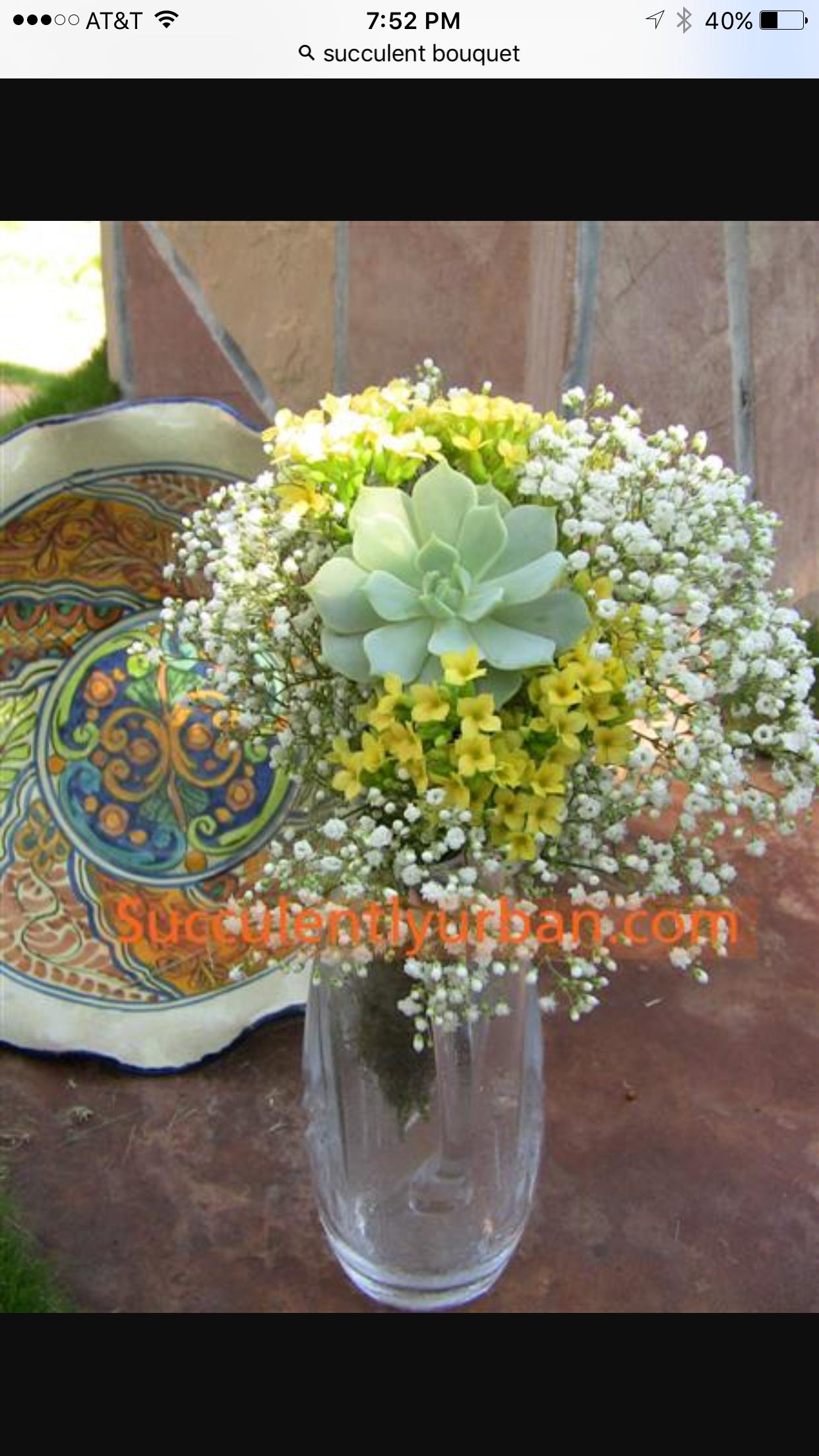 Pin by Barb Vandeman on Lou's Wedding Succulent bridal