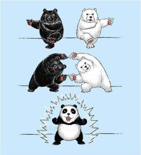 How the panda came to be