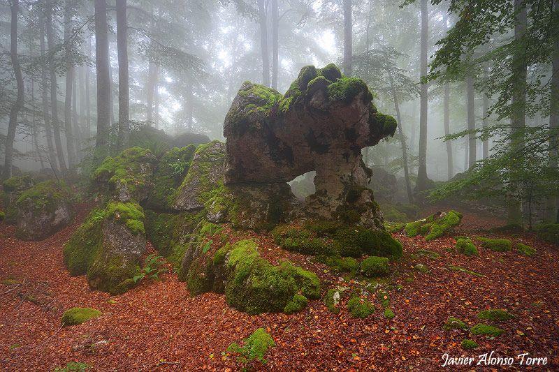 bosque encantado de urbasa en navarra