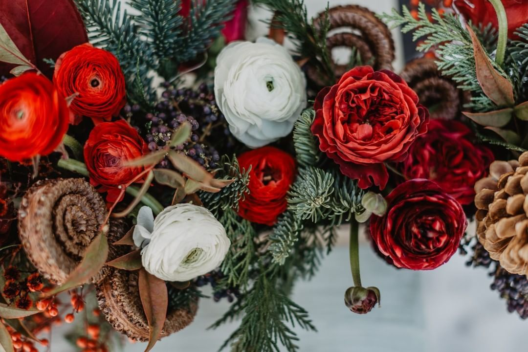A Christmas Arrangement.A Christmas Arrangement For A Little Home Get Together