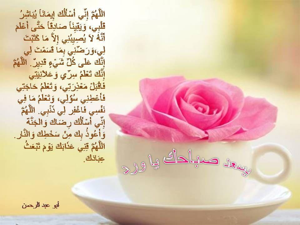 Pin By Islam And The Life On صباح الخير Tea Cups Glassware Tableware