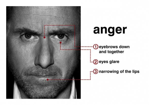 40 Face Anger Ideas Face Face Expressions Angry Face