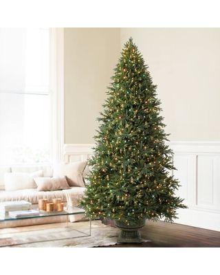 7.5' Balsam Hill Scotch Pine Artificial Christmas Tree - Unlit