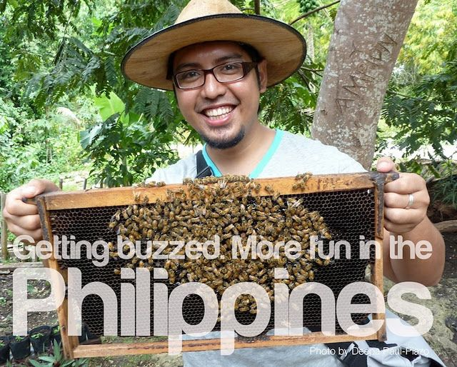 Even our bees are chill. It's more fun in the Philippines!