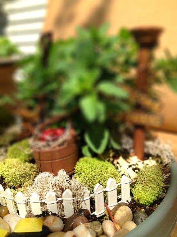 MIniature Garden Fence, Fairy Garden, Miniature Fairy Garden, Fairy ...