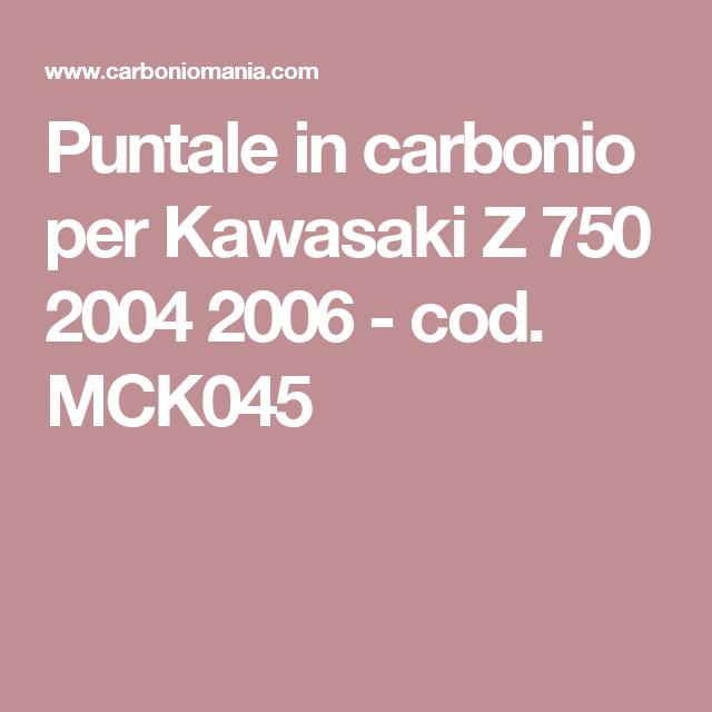 Puntale in carbonio per Kawasaki Z 750 2004 2006 - cod. MCK045