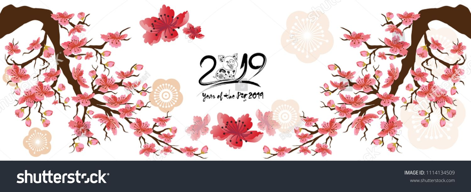 Set Banner Happy new year 2019 greeting card and chinese