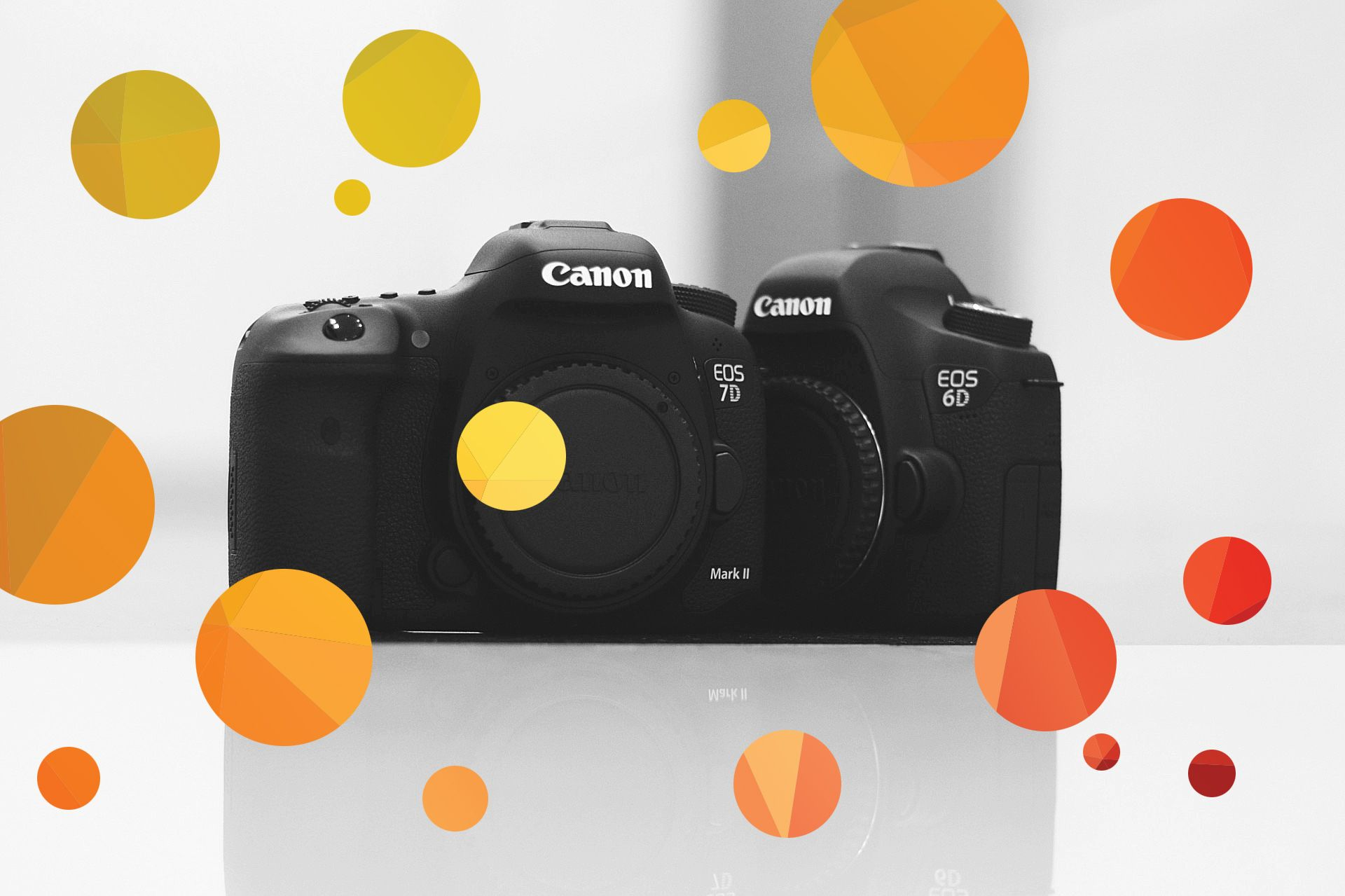 Canon 7d mark ii vs 6d which is better camera art