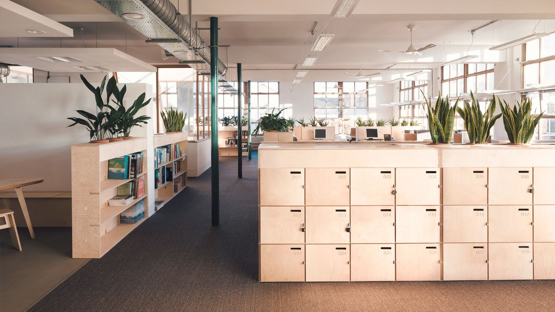 Workspace Furniture for Greenpeace office in London