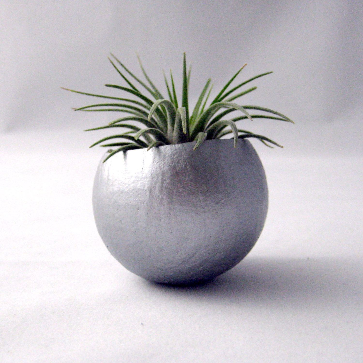 Single Air Plant Pod  Silver $1100, Via Etsy (Could