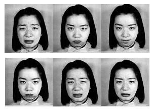 an analysis of the different faces of databases Iii) different types of face occlusions are included hence, this new database can be a very valuable resource for development and evaluation of algorithms on availability of 3d range scanners the 3d face processing can be envisioned as a single modality biometric approach in lieu of the 2d version.