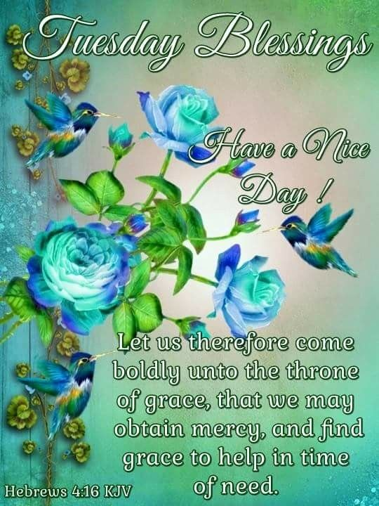 Tuesday Blessings!.