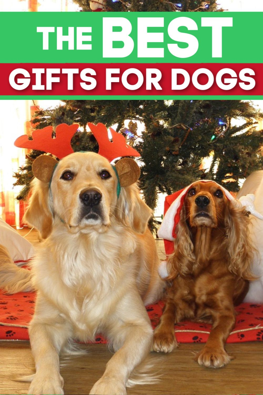 The Best Dog Christmas Gifts A List Of The Best Gift Ideas For Your Dog Dog Christmas Gifts Christmas Dog Holiday Dog Treats
