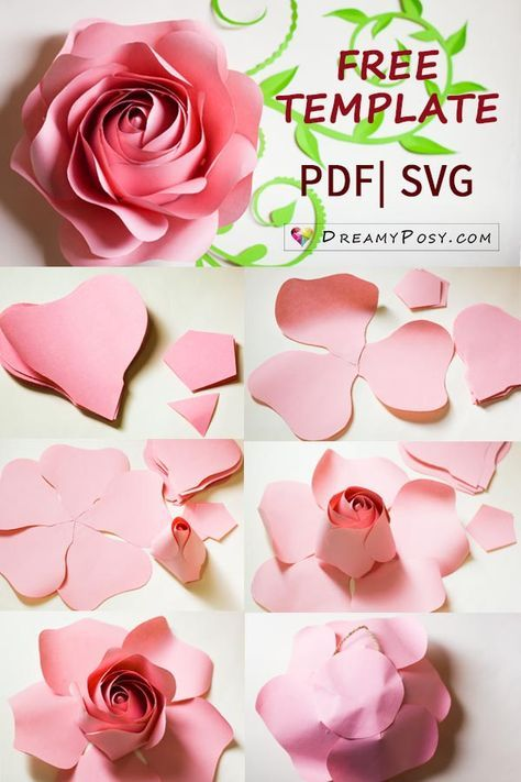 FREE template and full tutorial to make giant rose for backdrop #giantpaperflowers
