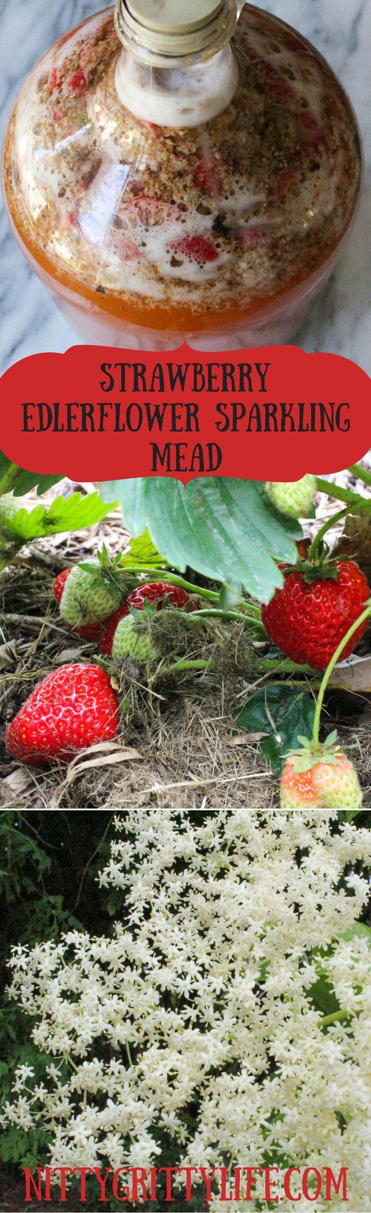 Strawberry Elderflower Sparkling Mead Recipe Elderflower Mead Mead Recipe