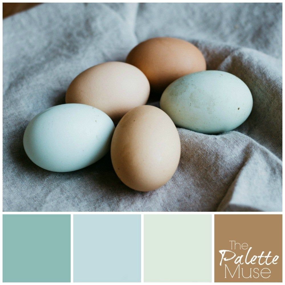 Eggshell Palette In 2020 Fresh Color Palette Eggshell Paint Color Nature Color Palette