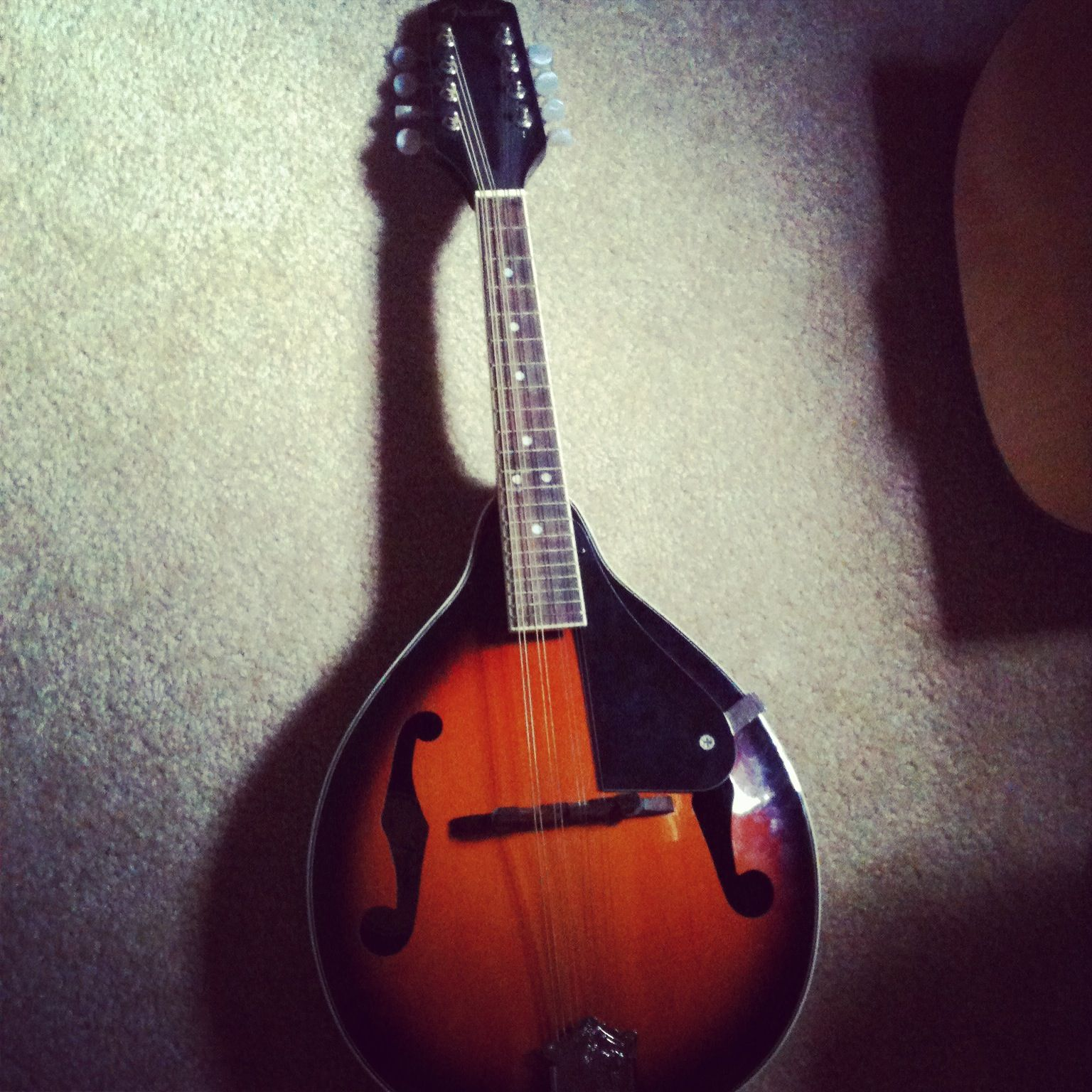 Mandolin 3 so cute and small music instruments guitar small