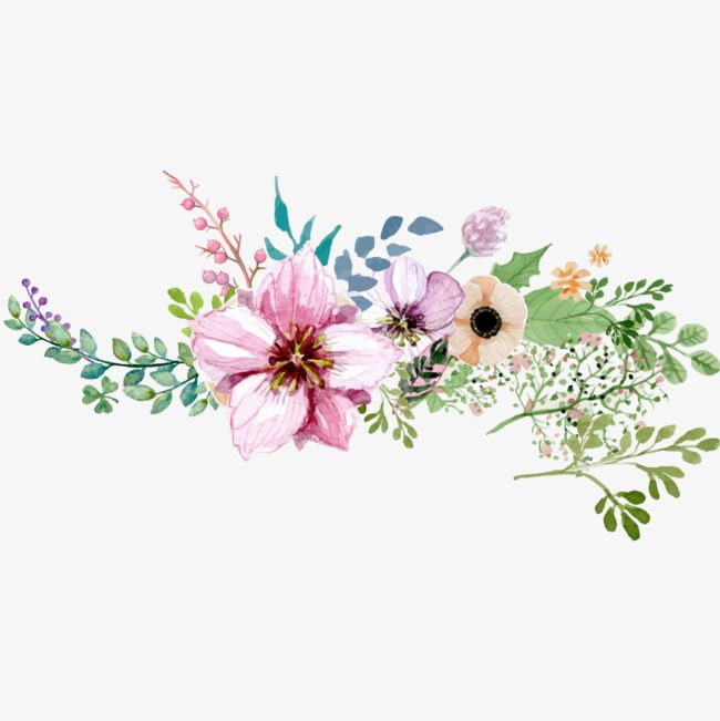 Painted Watercolor Flower Decoration Png Free Download In 2020