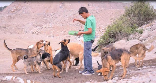 LIMA VAGA: Dr Vet va al rescate de animales enfermos en río C...