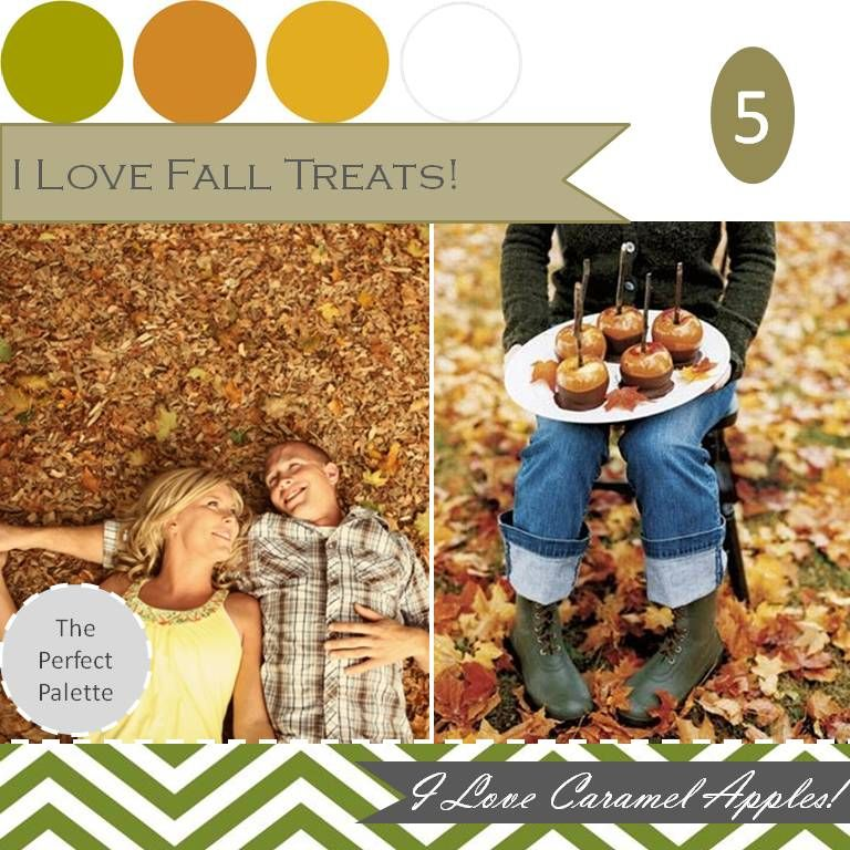 The Perfect Palette: {Fall Favorites}: These are a few of my favorite Fall things!