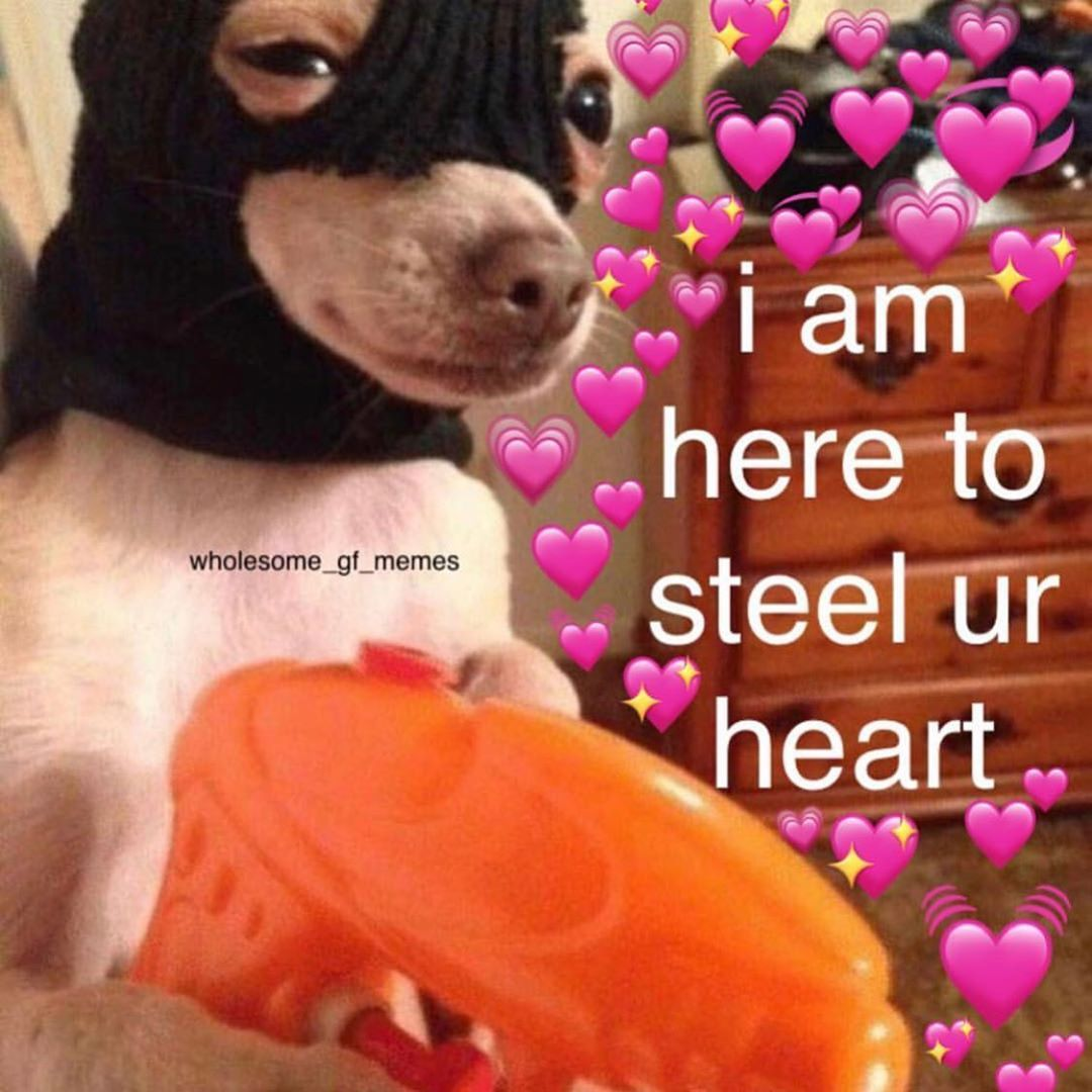 Tag Someone Who Stole Your Heart Cute Memes Cute Love Memes Freaky Memes