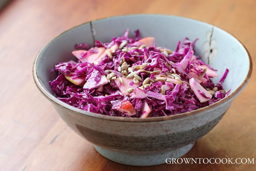Red cabbage slaw with ginger-yogurt dressing