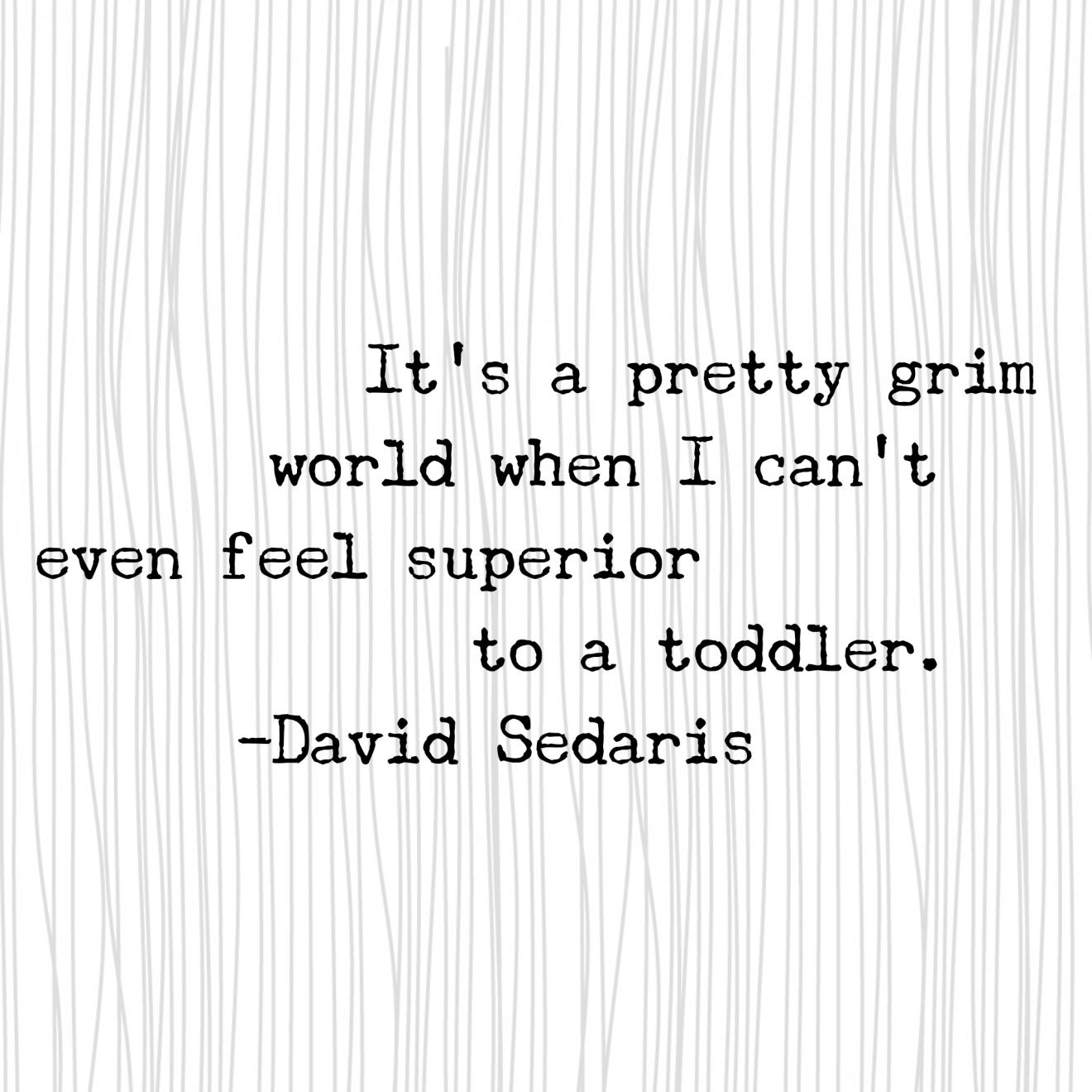 12 Quotes From David Sedaris In 2020 David Sedaris Quotes David