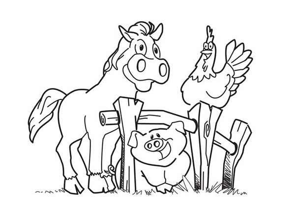 Happy Horse And Hen And Pig In Farm Animal Coloring Page Kids Play Color Farm Animal Coloring Pages Farm Coloring Pages Horse Coloring Pages