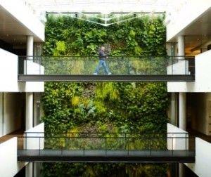 Wandbegrünung wand pflanzen wand begrünung vertikale grünflächen green wall