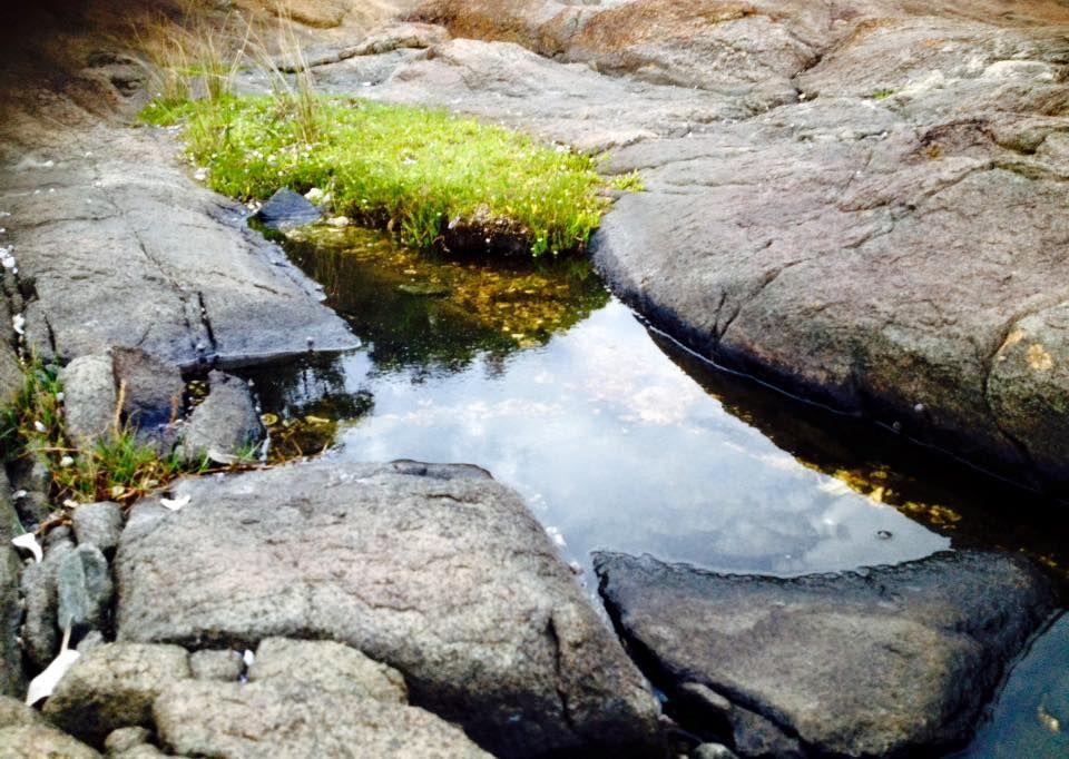Kiola Rocks