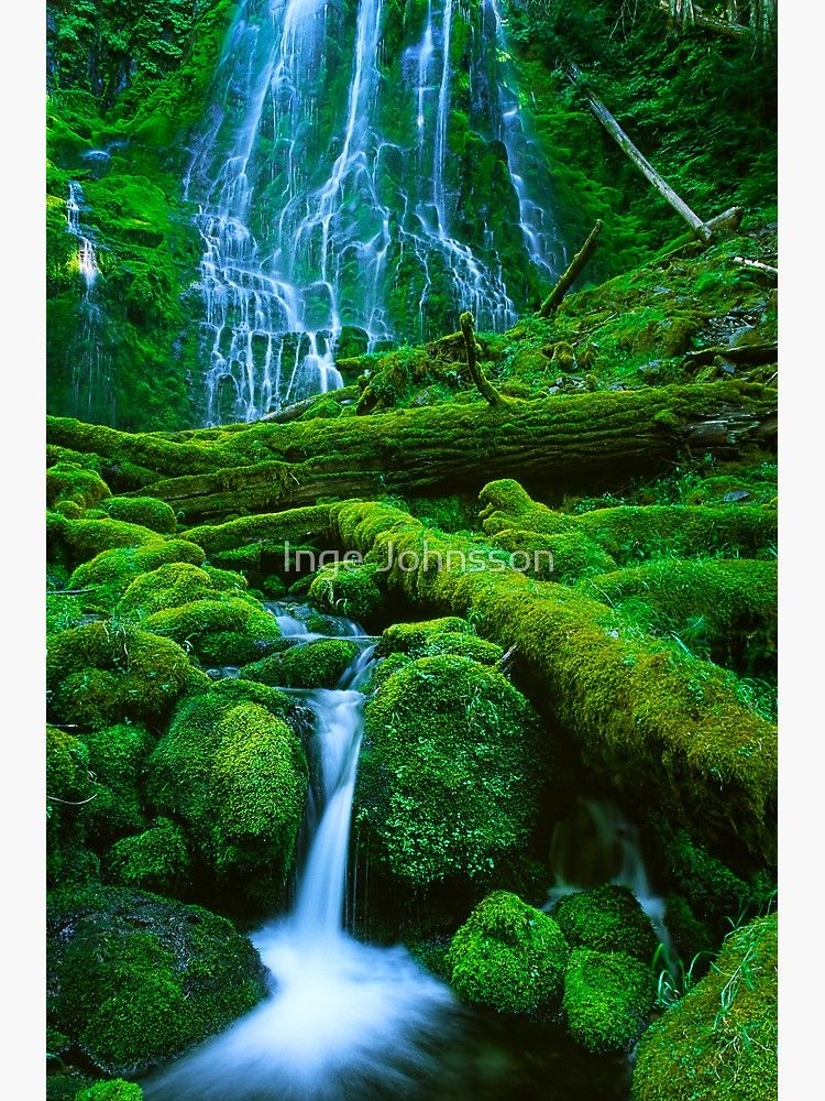 'Proxy Falls' Poster by Inge Johnsson