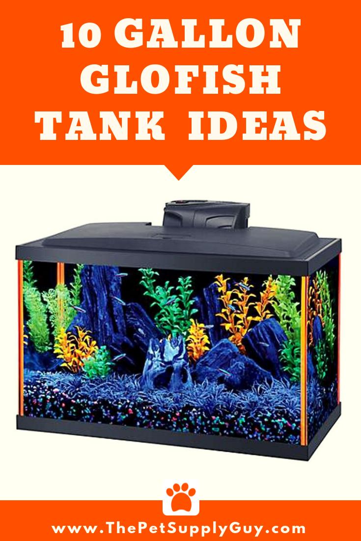 How Many Glofish In A 10 Gallon Tank Stocking Guide Glofish Tank Glofish 10 Gallon Fish Tank
