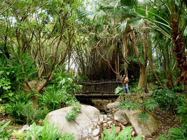 Harry P Leu Gardens Orlando Botanical Gardens Around The World Pinterest Gardens Parks
