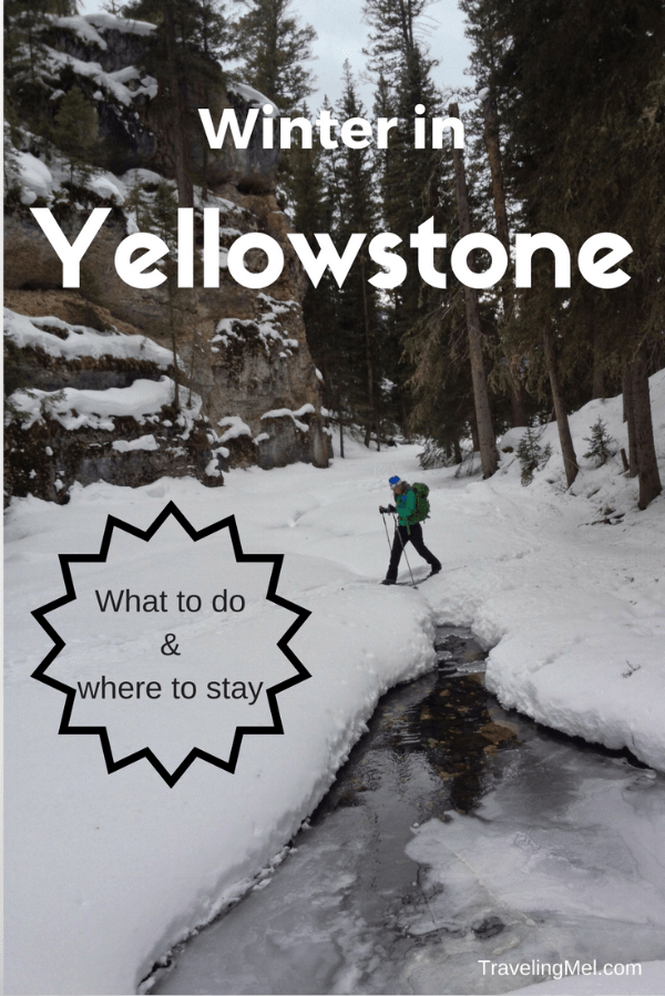Photo of Top Things to Do in Yellowstone in Winter – TRAVELING MEL'S YELLOWSTONE TRIPS