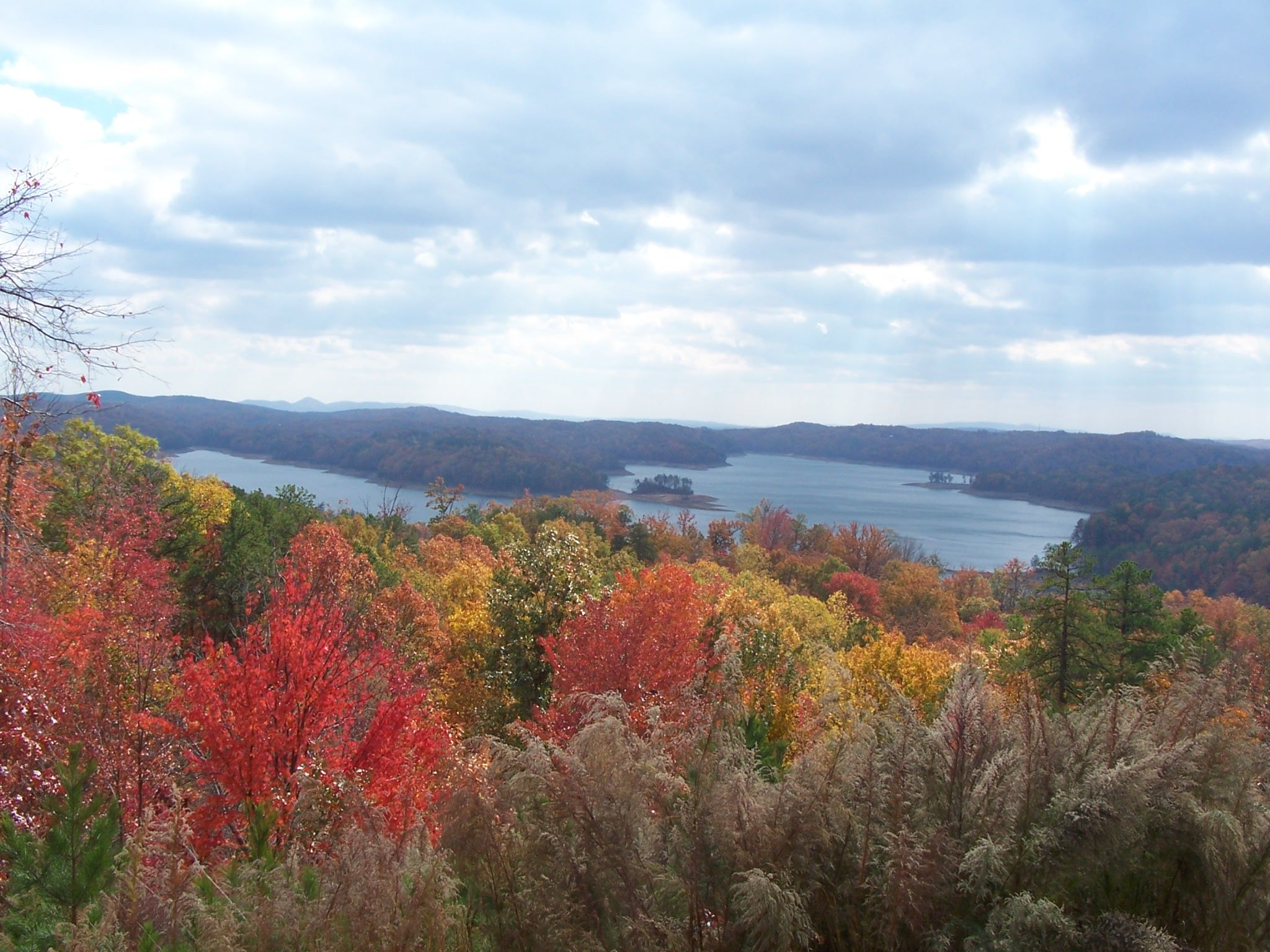 Fall Colors in Ellijay, (With images