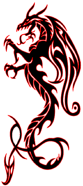 Tribal Dragon Tattoos High Quality Photos And Flash Designs Of Tribal Dragon Tattoos Tribal Dragon Tattoos Tribal Tattoos Tribal Tattoo Designs