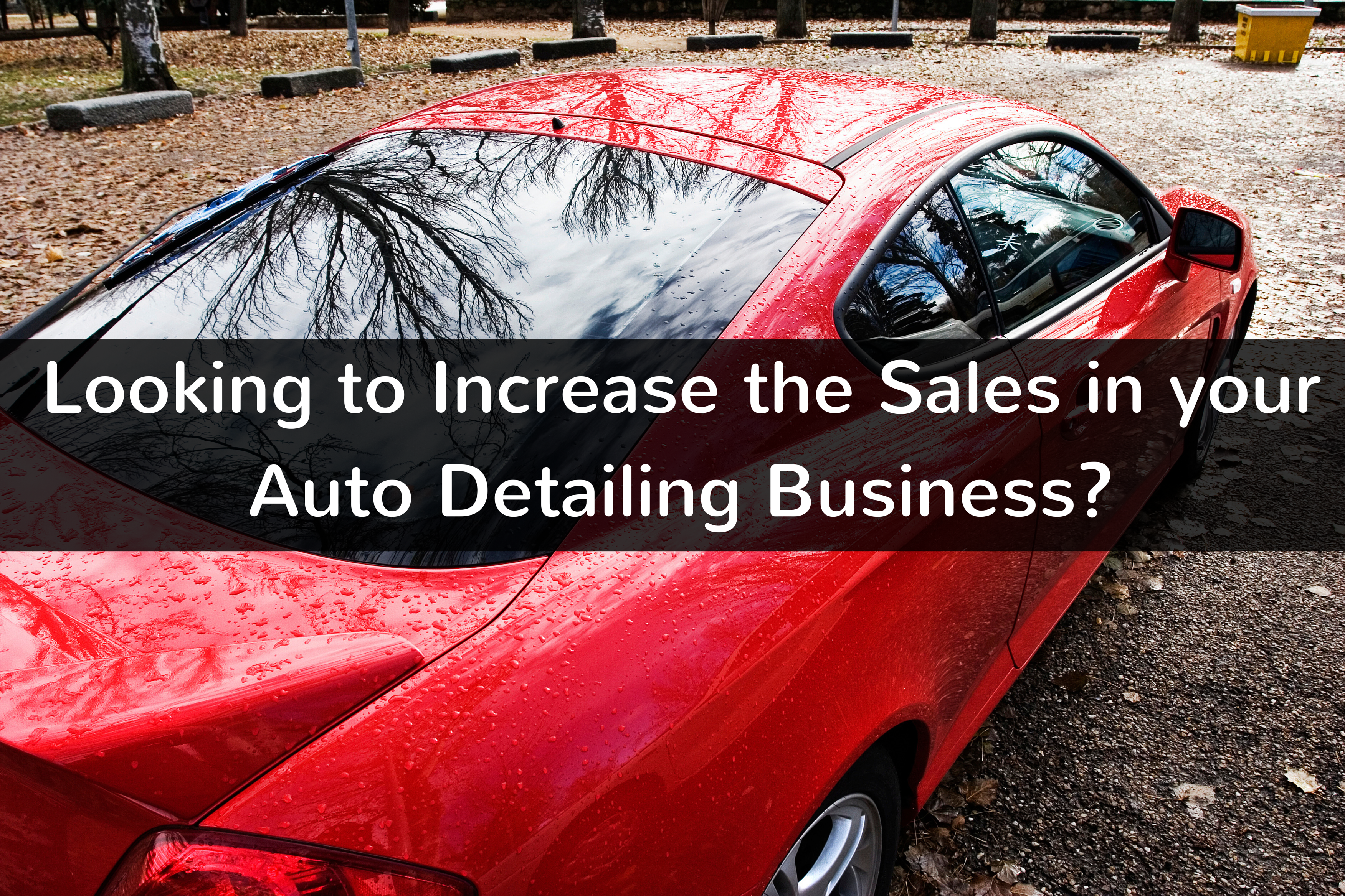 How to increase sales in your auto detailing business increase how to increase sales in your auto detailing business httpbraunautomotiveush solutioingenieria Images
