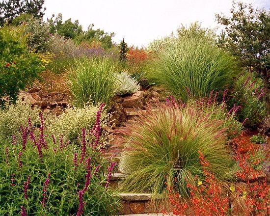 Ornamental Grass Hillside Sloped Garden Ornamental Grasses Mediterranean Landscaping