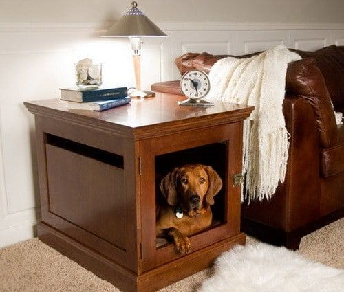 Creative Dog House Design Ideas 31 Pictures Cheap Dog Houses