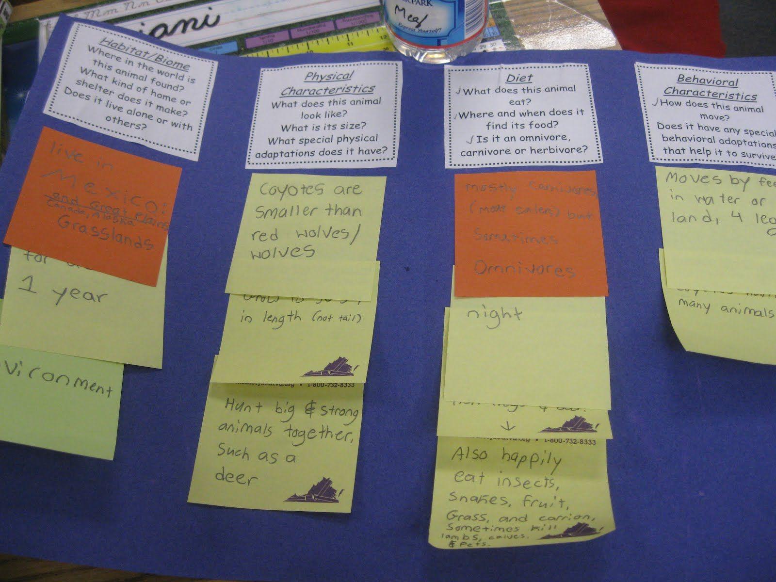 Pin Caryn Walker Education Informational Writing