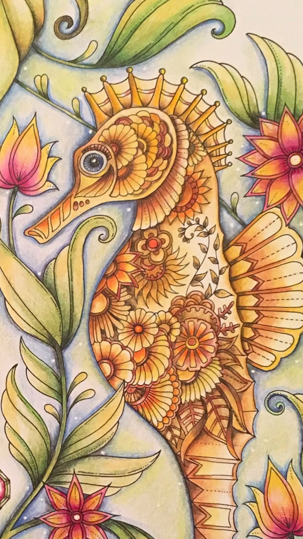 Zen ocean colouring book - Seahorse Lost Ocean Johanna Basford Coloured By Ness Butler
