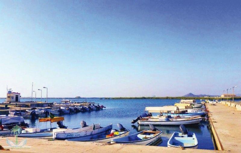 حظر صيد الناجل و الطرادي في أبريل القادم الشعابي عبدالله الشعابي عقارات الطائف عقارات مكة عقارات جدة Canal Structures